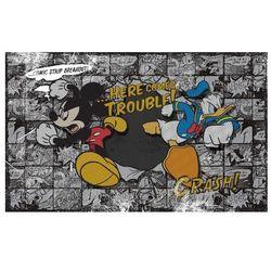 Myszka Miki i Kaczor Donald - fototapeta