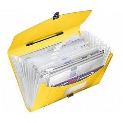 Teczka z 12 przegródkami i rączką ESSELTE Vivida, żółta 624027