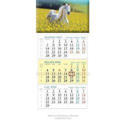 2016 Kalendarz ścienny Koń