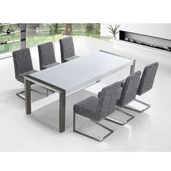 Zestaw mebli stal szlachetna – Stół 220 – Krzesła do wyboru - ARCTIC I