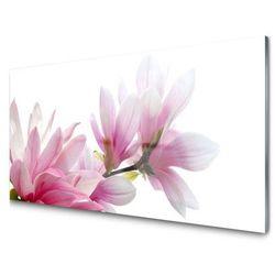 Tesco Kwiaty Pelargonie Od Obraz Akrylowy Kwiat Do Pokoju Do Obraz