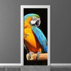 papuga 163 fototapeta na drzwi
