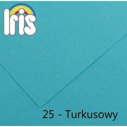 Brystol Canson Iris B1/240g turkusowy 25ark.