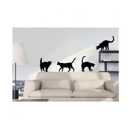 Winylowa Naklejka Na ścianę Koty Porównaj Zanim Kupisz
