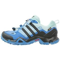 adidas Performance TERREX SWIFT R GTX Półbuty trekkingowe ray blue/core black/ice green