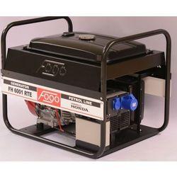 Agregat prądotwórczy Fogo FH 6001, Model - FH 6001 RTE