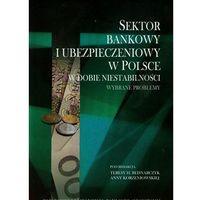 Sektor bankowy i ubezpieczeniowy w Polsce w dobie niestabilności (opr. miękka)