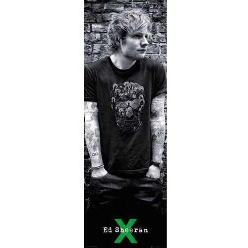 Ed Sheeran Czaszka I Tatuaże Plakat Porównaj Zanim Kupisz