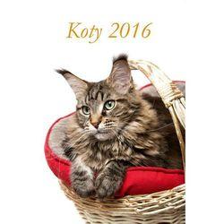 Kalendarz 2016 Planszowy 13 kart. Koty + zakładka do książki GRATIS