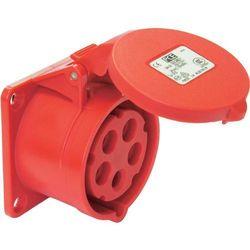 Gniazdo PCE 325-6, 400 V, 32 A, IP44
