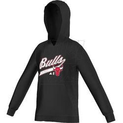 Bluza adidas Y GFX Team Hood Chicago Bulls Junior F96472