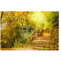 Obraz Kamienne schody w parku