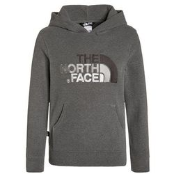 The North Face 100 Drew Peak Plv Hd Bluza Dzieci szary