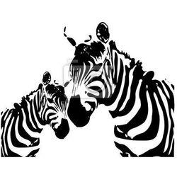 Fototapeta zebry - Matka i dziecko