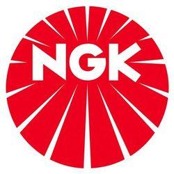 Świeca żarowa NGK D-Power 49 Y-609AS DP49, 059963319E,059963319F,059963319C,