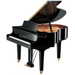 Yamaha GB1 K PE Baby Grand fortepian (151 cm) Płacąc przelewem przesyłka gratis!