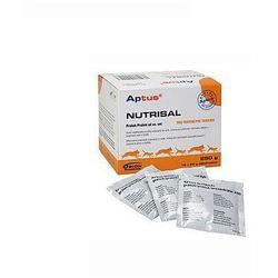 ORION PHARMA Aptus Nutrisal preparat do przywracania równowagi elektrolitowo-wodnej organizmu.