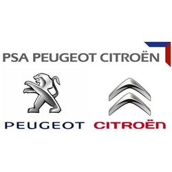 1618Z9 PSA Peugeot Citroen CZUJNIK CIŚNIENIA FAP PSA Czujnik, ciśnienie spalin 9662143180