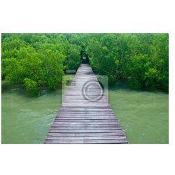 Fototapeta Most drewna
