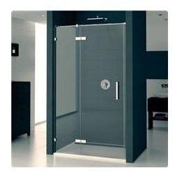 Drzwi SanSwiss Pur PU13P do wnęki szerokość do 1600 cm, lewe, chrom, szkło przeźroczyste (montaż bezprofilowy) PU13GSM11007