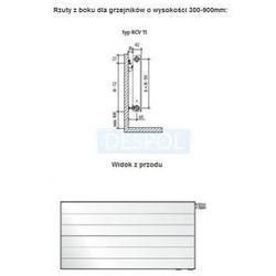 RCV11 600x400